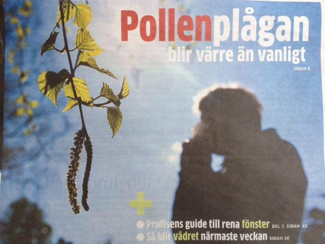 pollenallergi-gp-korsallergi