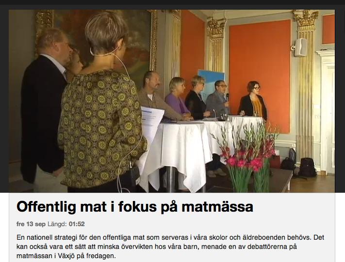 Kajsa-Asp-Jonson-Moderator-MAT2013