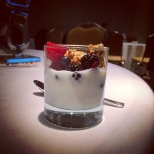 YogurtSnack